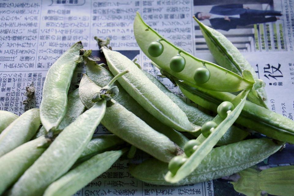 ぶんどう豆